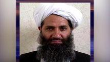خبر مرگ سرکرده طالبان تایید شد