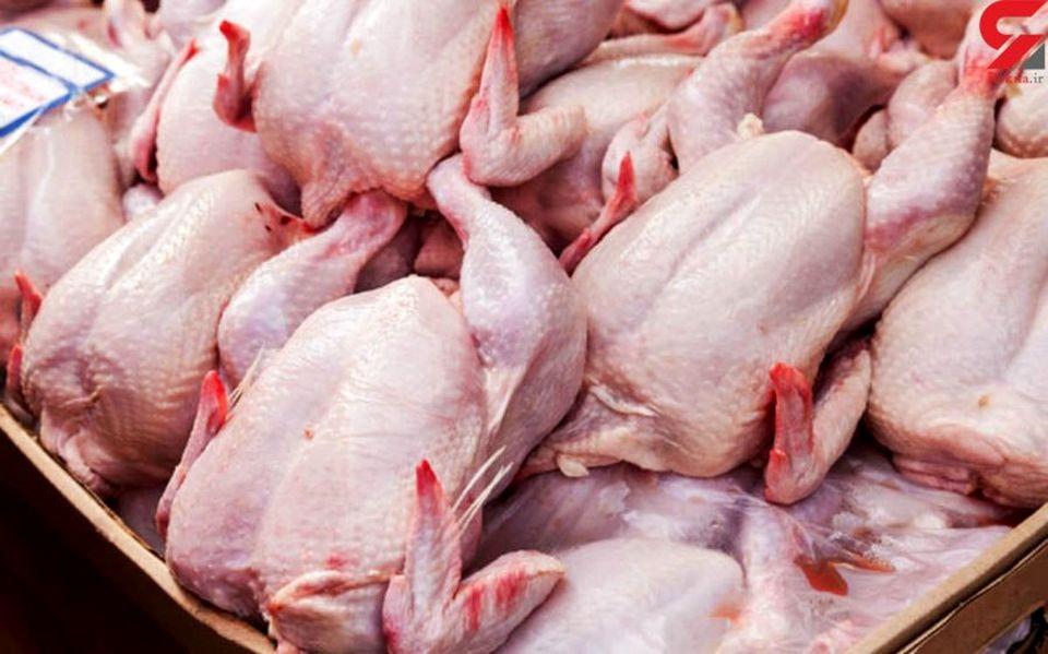 قیمت مرغ در بازار چند؟ + جدول قیمت